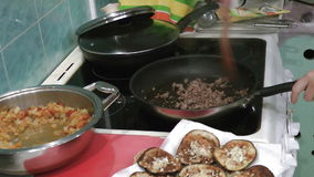 Cooking meat mesh stock footage