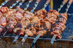 Cooking meat on skewers. Shashlik on coals Stock Image