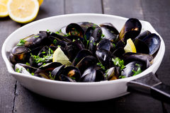 Cooking Mussels Royalty Free Stock Photo