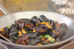 Cooking mussels Royalty Free Stock Photos