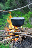 Cooking in the nature Royalty Free Stock Image