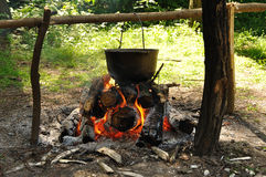 Cooking in the nature. Cauldron on fire in forest Stock Images