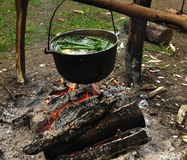 Cooking in the nature. Cauldron on fire in forest Stock Image