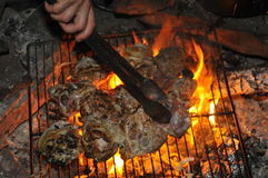 Cooking at night at campground Stock Images