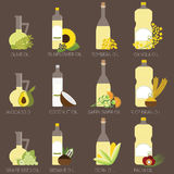 Cooking oil. 12 cooking oils in bottle. Healthy oil from canola, coconut, sesame, soybean, sunflower, safflower, palm, olive, grape seed, rice bran and avocado Stock Photography
