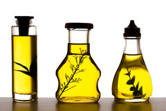 Cooking oil plants. Carafe of olive oil on white Stock Images