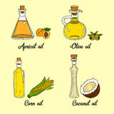 4 cooking oils in cute sketchy bottles. Hand drawn doodle set of edible vegetable food oil. With origin products olive, apricot, corn, coconut Stock Images