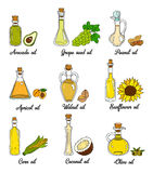 9 cooking oils in cute sketchy bottles. Hand drawn doodle set of edible vegetable food oil. With origin products olive, apricot, corn, grape seed, walnut Stock Images