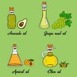4 cooking oils in cute sketchy bottles. Hand drawn doodle set of edible vegetable food oil. With origin products olive, apricot, grape seed, avocado Stock Photos