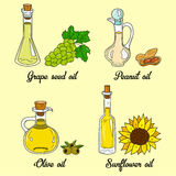 4 cooking oils in cute sketchy bottles. Hand drawn doodle set of edible vegetable food oil. With origin products olive, grape seed, peanut and sunflower Royalty Free Stock Photo