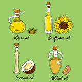 4 cooking oils in cute sketchy bottles. Hand drawn doodle set of edible vegetable food oil. With origin products olive, walnut, coconut and sunflower Stock Photography
