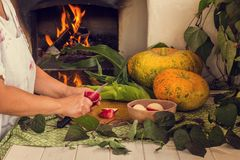 Cooking in the oven. Slices of apples. Vegetables and fruits are baked in the oven. Apple slices, pumpkin and corn on a stove background Woman preparing food stock photos