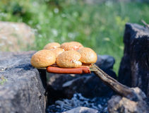 Cooking over a makeshift campfire Royalty Free Stock Image