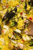 Cooking paella Royalty Free Stock Photos