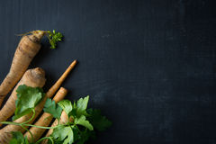 Cooking Parsley Food Background Stock Images