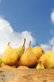 Cooking pears Gieser Wildeman Royalty Free Stock Photos
