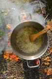 Cooking on a picnic - browned onion in a pan Stock Images
