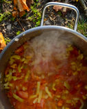 Cooking on a picnic - onion, pepper and tomatoes boiling in a pan Stock Photo