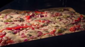 Cooking a pizza. Time lapse of cooking a pizza stock video footage