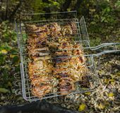 Cooking pork ribs on the fire. Shish kebab on the grill, barbecue with a flame in nature. Side view stock images
