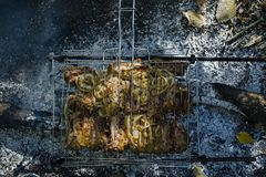 Cooking pork ribs on the fire. Shish kebab on the grill, barbecue with a flame in nature. Side view stock image