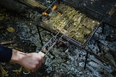 Cooking pork ribs on the fire. Shish kebab on the grill, barbecue with a flame in nature. Side view royalty free stock photo
