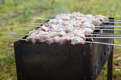 Cooking pork shashlik  on skewer Royalty Free Stock Images