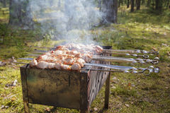 Cooking pork shashlik  on skewer Stock Photos
