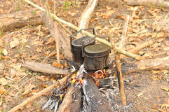 Cooking pot in campfire, Camping in forest Stock Photography