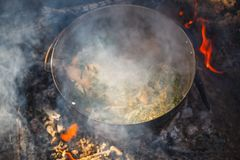 Cooking in a pot on the fire in the spring of red fish soup royalty free stock photo