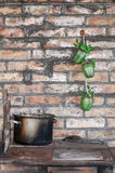 Cooking pot and green peppers Stock Images