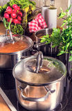 Cooking pots on the stove. A beauty cooking pots on the stove Stock Photography