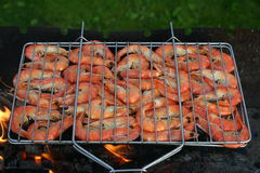 Cooking prawns on the fire Royalty Free Stock Photography