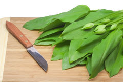 Cooking with ramsons. Fresh ramsons leaves on a wooden plate with a kitchen knife Royalty Free Stock Image