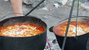 Cooking red borsch. Close-up cooking ukranian red borsch in a cauldron on campfire stock footage