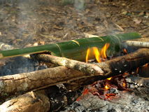 Cooking rice with the bamboo in  the camp Royalty Free Stock Photos