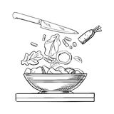 Cooking salad with fresh vegetables sketch Stock Photos