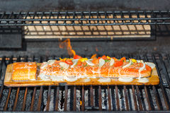 Cooking Salmon on Cedar Plank in the Barbecue Royalty Free Stock Photography