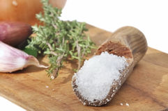 Cooking salt and aromatics Royalty Free Stock Photos