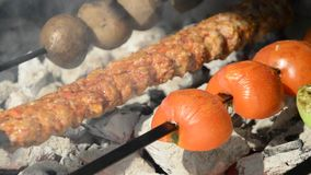 Adana kebab and fire stock footage