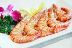 Cooking sea shrimp Royalty Free Stock Photography