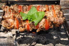 Cooking shashlik Stock Photography