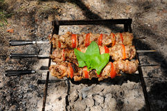 Cooking shashlik Royalty Free Stock Photos