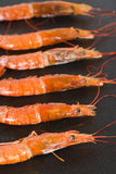 Cooking shrimps Royalty Free Stock Photo