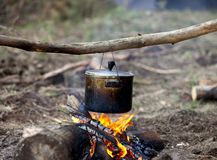 Cooking in sooty cauldron on campfire. At forest Royalty Free Stock Photography