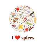 Cooking spices on bauble shape. Images Royalty Free Stock Photography