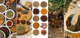 Cooking Spices - Flavoring and Seasoning. A selection spices used for flavoring and seasoning Royalty Free Stock Photo