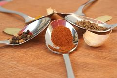 Cooking spices. Food seasoning. Spices in a teaspoons. Stock Images