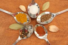 Cooking spices. Food seasoning. Spices in a teaspoons. Royalty Free Stock Photography