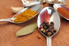 Cooking spices. Food seasoning. Spices in a teaspoons. Stock Photos